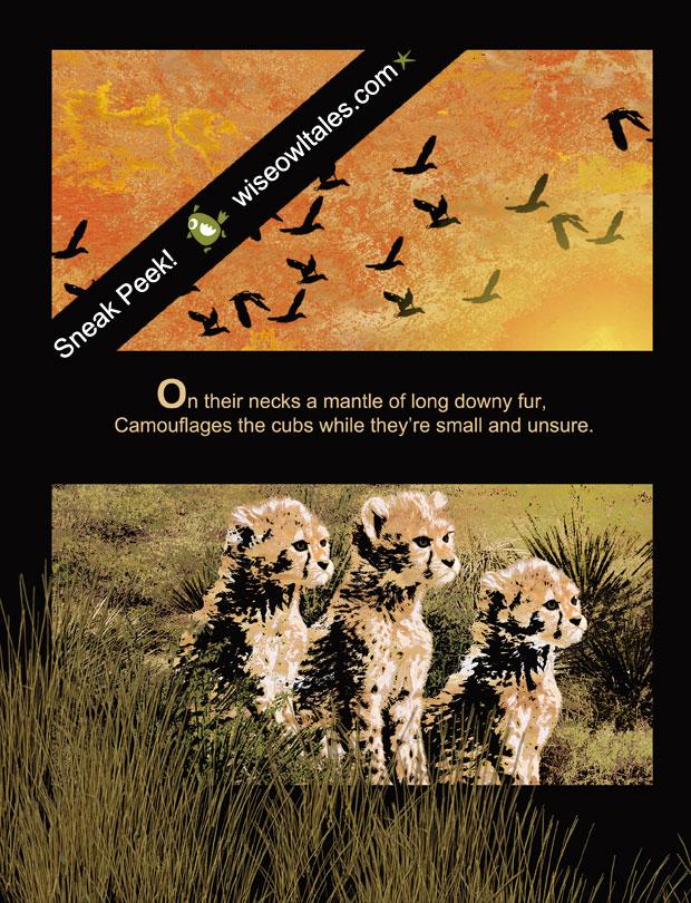 Chitraka – A Challenged Cheetah Tale